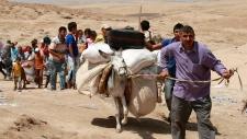 Syrian refugees in northern region of Iraq