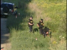 Police investigate at the scene of a fatal collision between an SUV and bicycle near Aylmer, Ont. on Saturday, August 24, 2013.