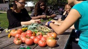 CTV Montreal: Teens grow with urban farming