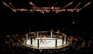 In this Dec. 8, 2012, file photo, competitors battle during a UFC on Fox mixed martial arts event at the Key Arena in Seattle. (AP Photo/Jeff Chiu, File)
