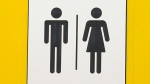 There are 14 all-gender washrooms located across the University of Alberta campus.