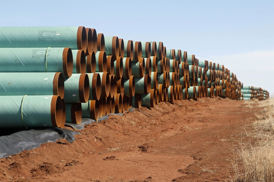 Kilometres of pipe ready to become part of the Keystone Pipeline are stacked in a field near Ripley, Okla. (AP / Sue Ogrocki)