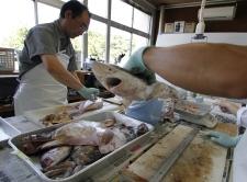 Fukushima Prefecture Fisheries Research Center