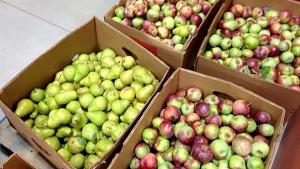 Fruit Share DE