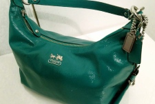 Erin Howlett purse
