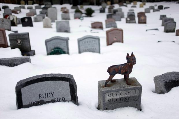 Hartsdale Pet Cemetery in Hartsdale, N.Y.