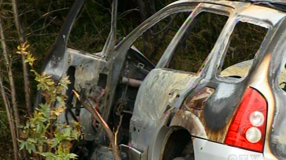 Two stray horses were struck by a vehicle on a highway in Nova Scotia on Saturday, Sept. 14, 2013.