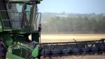 CTV Edmonton: Farming season success