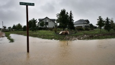 Flooded Colorado towns