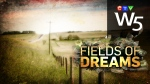 W5: Field of Dreams