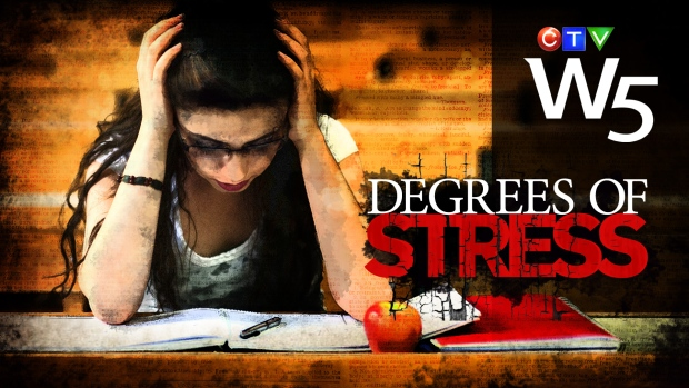 the causes of stress among university Stress among college students leaving home for the first time and going away for school can be very difficult for some people in many cases for college freshmen this.