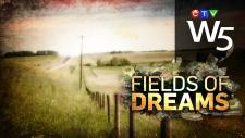 W5: Fields of Dreams