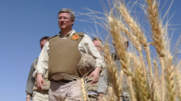 Prime Minister Stephen Harper walks through a wheat field at Tarnack Farms in Afghanistan on Monday, May 30, 2011. (Sean Kilpatrick  / THE CANADIAN PRESS)