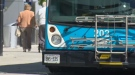 A Guelph transit bus is seen on Monday, Sept. 23, 2013.