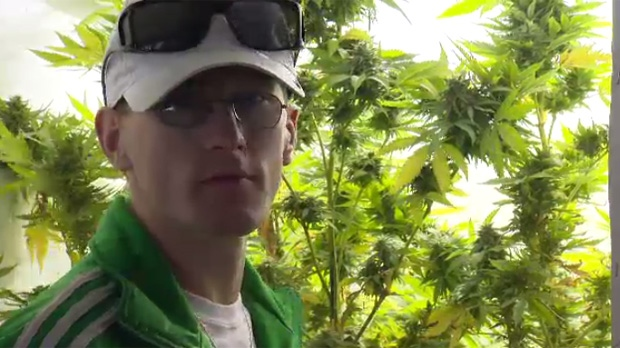 Steven Stairs has a licences to grow marijuana