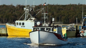 A fishing boat heads to dock in Eastern Passage, N.S. on Wednesday, Oct. 2, 2013. (Andrew Vaughan / THE CANADIAN PRESS)