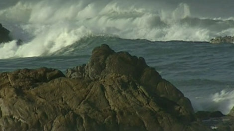A group of marine scientists has issued a dire prediction about the state of the world's oceans in a new report that warns of mass extinctions.