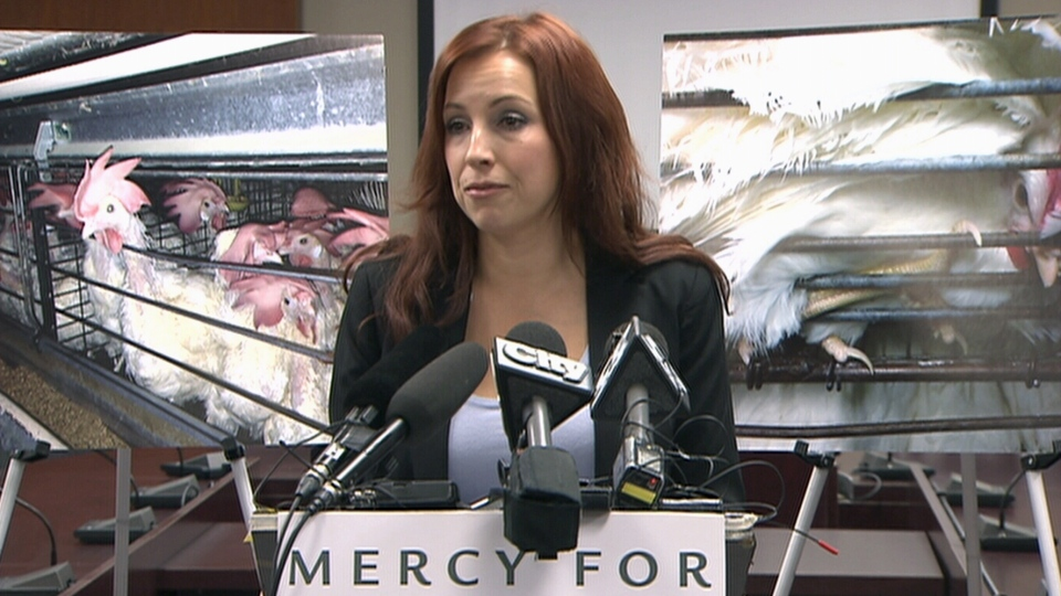 Kimberly Carroll of Mercy For Animals Canada speaks during a press conference in Toronto, Monday, Oct. 21, 2013.
