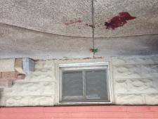 Windermere Road stabbing