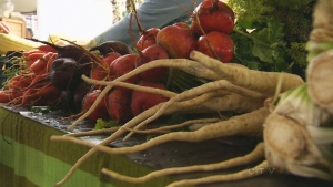 CTV Winnipeg: Researchers seek healthier snacks