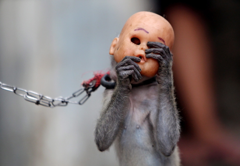 A street monkey wears a baby doll mask as it performs in a slum in Jakarta, Indonesia, Thursday, Oct. 24, 2013. (AP / Tatan Syuflana)
