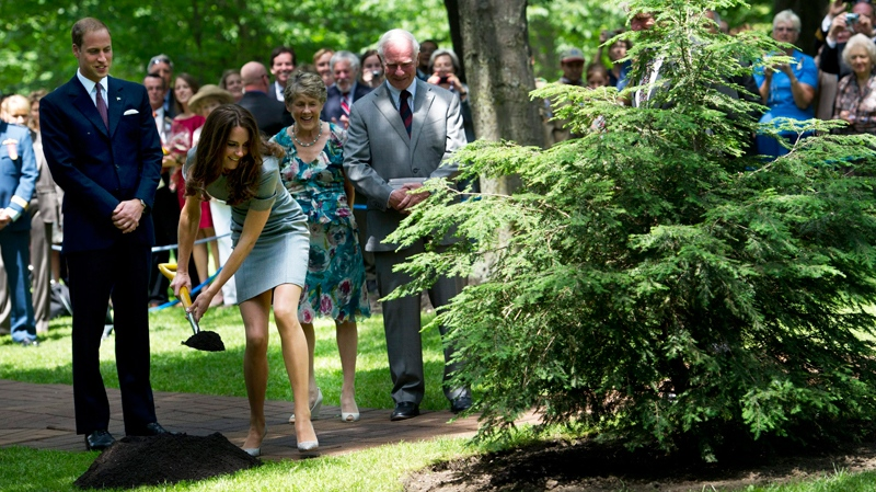 The Duke and Duchess of Cambridge take part in a ceremonial tree planting with Governor General David Johnston and his wife Sharon at Rideau Hall in Ottawa on Saturday, July 2, 2011. (Nathan Denette / THE CANADIAN PRESS)