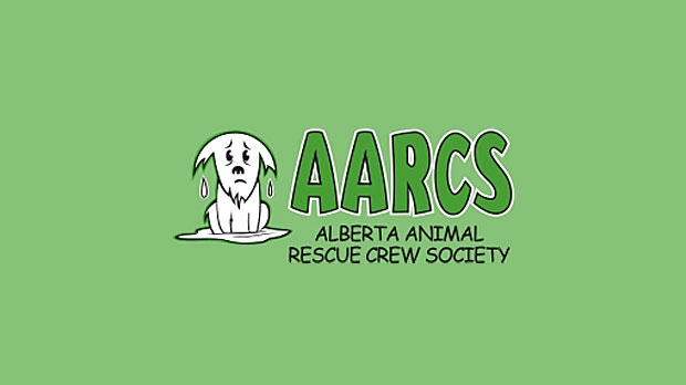 AARCS, Alberta Animal Rescue Crew Society, homeles