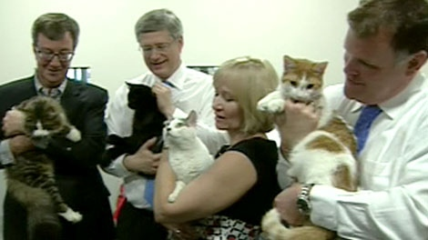 Image result for stephen and laureen harper picture