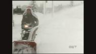 CTV Regina: Drivers rescue on slick streets