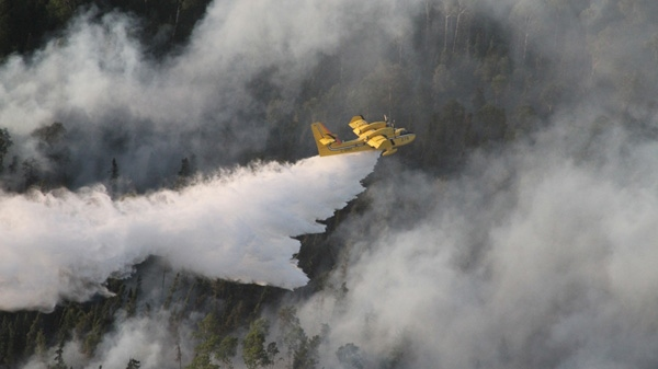 A water bomber flies over a forest fire in Deer Lake, Ont.