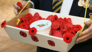 Poppy boxes pilfered