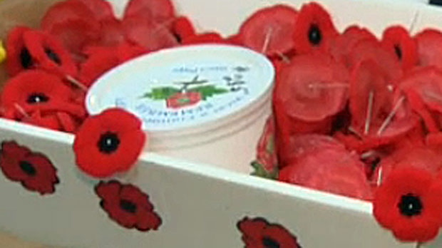 Money raised from the sale of the poppies goes to help veterans and their families.
