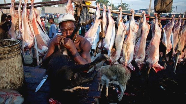 Slaughterhouse worker Christopher readies a goat for skinning at La Saline outdoor market in Port-au-Prince, Haiti, Saturday July 9, 2011. (AP / Eduardo Verdugo)