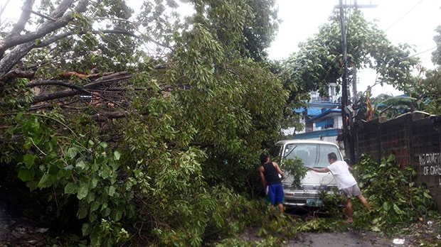 Residents clear the road after a tree was toppled by strong winds and damaged a van at the onslaught of powerful typhoon Haiyan that hit the island province of Cebu, Philippines, Friday, Nov. 8, 2013. (AP / Chester Baldicantos)