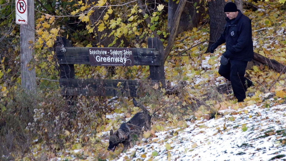 A Pittsburgh Police K-9 officer comes out of the woods near the scene where three students were shot outside Brashear High School Wednesday Nov. 13, 2013, in Pittsburgh. (AP/ Gene J. Puskar)