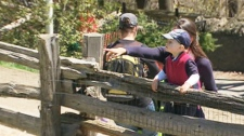 The KPMG LLP  report suggests eliminating the city's urban agriculture service entirely, which would mean the end to such city attractions as the Riverdale Farm and gardens found in neighbourhood parks.