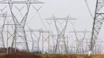 Hydro Quebec power lines are shown on Oct. 29, 2009 in Levis Que. (THE CANADIAN PRESS/Jacques Boissinot)