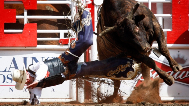 Study Confirms Dangers Of The Rodeo Ctv News