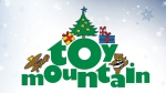 Toy Mountain