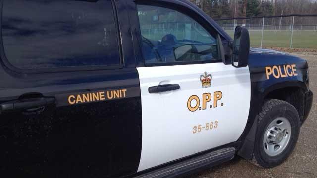 OPP K9 generic, police generic, crime generic