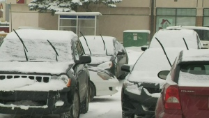 CTV Edmonton: Parking ban extended, crews clearing