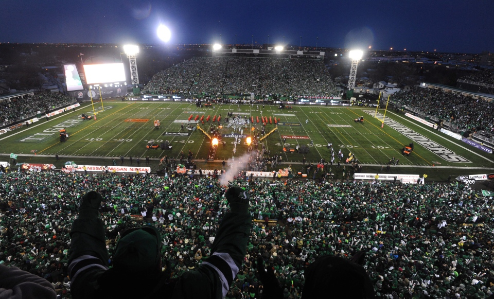 Fans cheer during opening ceremonies at the Grey Cup in Regina Sunday Nov. 24, 2013. (CP / Liam Richards)