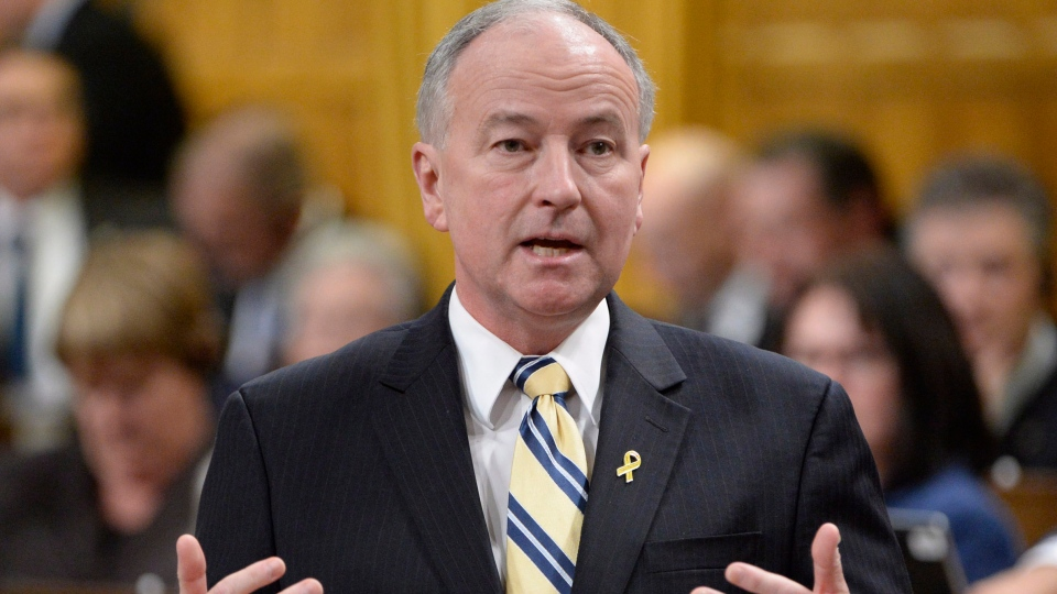 Defence Minister Rob Nicholson answers a question during Question Period in the House of Commons on Parliament Hill in Ottawa, Thursday, Nov.28, 2013 . (Adrian Wyld / THE CANADIAN PRESS)