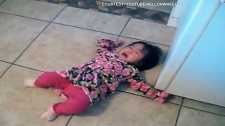 A child throws a tantrum