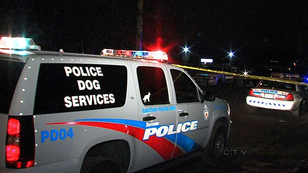 A dog had to be put down after it was shot in the back by an unknown assailant in Scarborough early Sunday, Dec. 1, 2013.