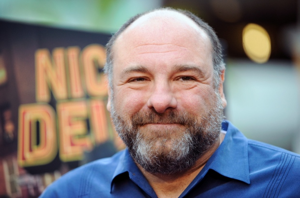 "Actor James Gandolfini is seen at the L.A. premiere of ""Nicky Deuce"" in Los Angeles on May 20, 2013.  (Invision / Richard Shotwell)"