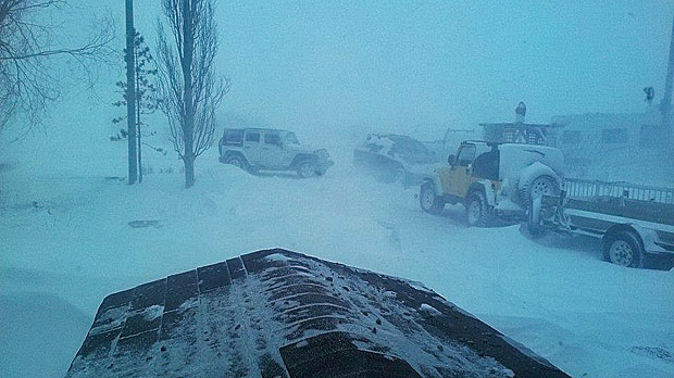 MyNews contributor Allison Israels shared this photo of cars stuck in the snow after a blizzard hit Calgary on Monday, Dec. 2, 2013. (MyNews / Allison Israels)