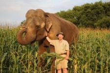 Limba the elephant dies