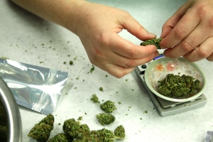 In this Oct. 10, 2012 file photo, marijuana is weighed and packaged for sale at the Northwest Patient Resource Center medical marijuana dispensary in Seattle. (AP Photo/Ted S. Warren, File