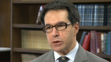 Simon Stern, who is a professor at the University of Toronto, is seen speaking to CTV News in this undated image.